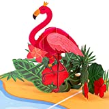Paper Love Flamingo Pop Up Card, Handmade 3D Popup Greeting Cards for Mothers Day, Valentines Day, Wedding, Anniversary, Love, Romance, Thank You, Thinking of You, Sympathy, All Occasion   5' x 7'
