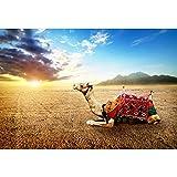Renaiss 7x6ft Vinyl Ancient Egyptian Theme Photography Backdrop Desert Camel Oasis Blue Sky White Clouds Sunrise Backdrop Interior Decorations Portrait Photo Studio Props
