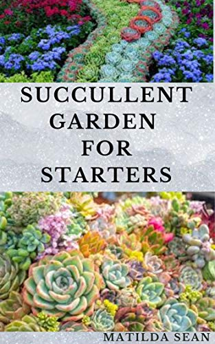 SUCCULLENT GARDEN FOR STARTERS: Complete guides on succulent garden for beginners