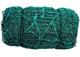 Easyshoppingbazaar Anti Bird Net/Garden net Color Green 6x10 Foot (60 sq ft,25 mm Hole), with Required Installation Clips(Nylon)