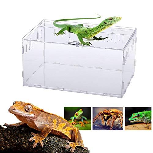 Acryl Terrarium Transport Spinne Zucht Box Reptil Fütterungsbox Zum Klettern Pet Terrarium Schlangenspinne Eidechse Skorpion Hundertfüßer