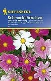 Schmuckkörbchen, 'Sensations-Mischung'