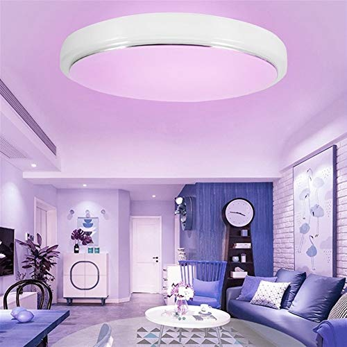 GYLJJ OEM afstandsbediening APP afstandsbediening timing wifi smart plafond lamp RGBCW dimmen 60W smart home slaapkamer lamp