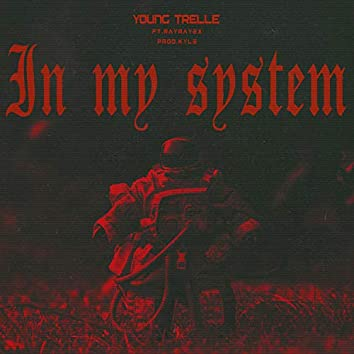In My System (feat. RayRay2x)