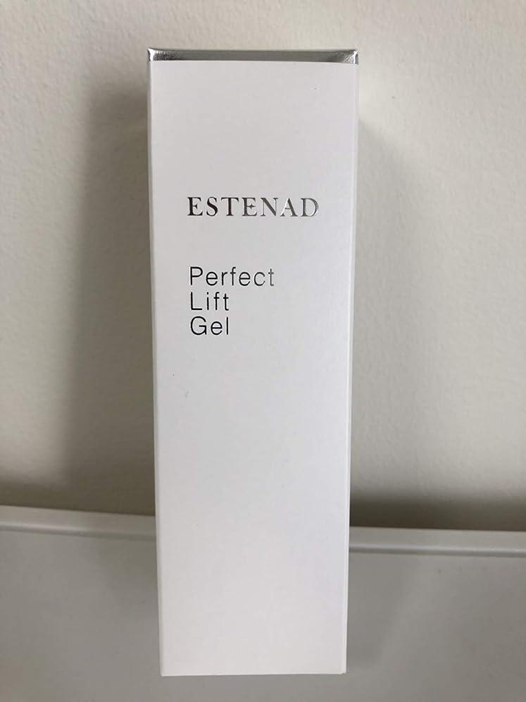 綺麗な責出版エステナード パーフェクトリフトジェル 美容液ジェル 80g