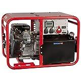 Endress ESE 1006 DBS-GT Stromerzeuger
