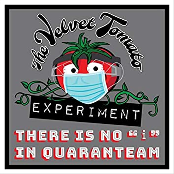 """There Is No """"I"""" In Quaranteam"""