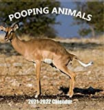 Pooping Animals 2021-2022 Wall Calendar: Hilarious Gag Gift with 18 High Quality Pictures of Domestic and Wild Animals Pooping