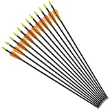 NIKA ARCHERY Fiberglass Arrows for Youth Practise Recurvebow Compound Bow Shooting 12X 26 inch