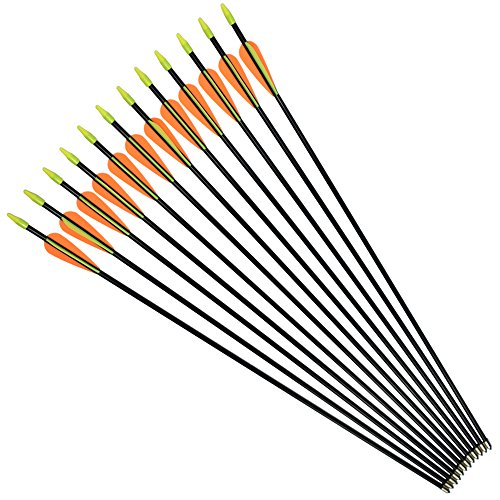 NIKA ARCHERY Fiberglass Arrows for Youth Practise Recurvebow Compound Bow Shooting 12X 24 inch