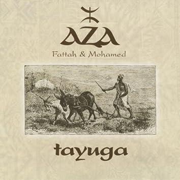 Tayuga
