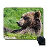 iFUOFF Mousepad, Bear Fashion Oblong Mouse Pad Mat with Rubber Gift Idea Non Slip Gaming MousePads Mat 7'x9'