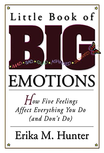 Little Book of Big Emotions: How Five Feelings Affect Everything You Do (and Don't Do)