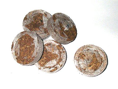 Jiffy Quelltöpfe im Karton 100 Stück Anzucht Stecklinge Sämlinge
