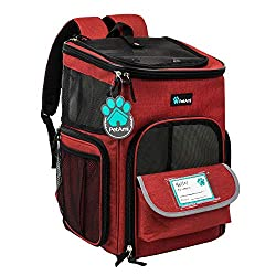 backpack dog carrier 20 lbs