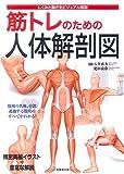 筋トレのための人体解剖図