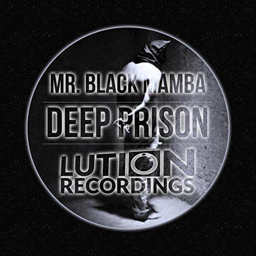 Mr. Black Mamba