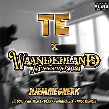 Triple Entente 2021 X Waanderland 2021 Hjemmesnekk (feat. Lil Simp, Influencer Benny & Ratatouille)