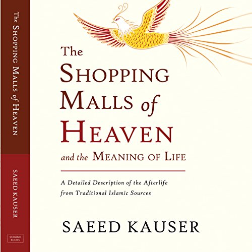 The Shopping Malls of Heaven and the Meaning of Life audiobook cover art