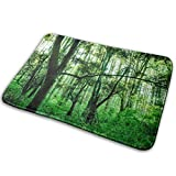 VTYOSQ Landscapes Bath Rugs and Mats Memory FoamAlfombra de baños Non Slip Soft Absorbent Bath Rugs Rubber Back Runner Mat for Kitchen Bathroom Floors 15.7' X 23.5', White