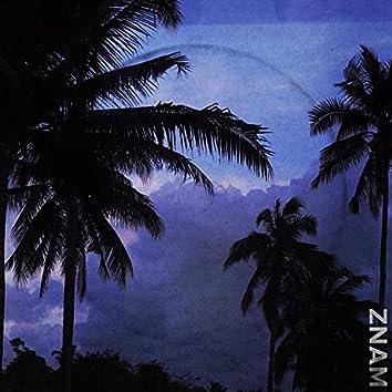 Znam (feat. Dejz)