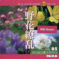 MIXA Image Library Vol.85「野花繚乱」