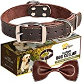 Leather Dog Collar for Medium Dogs - Heavy Duty Wide Dog Collars with Durable Metal Hardware & Double D-Ring - (M: 1,2' Width / 13'- 20' Length, Brown)