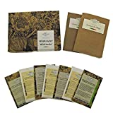 Hierbas silvestres - set de semillas regalo con 7 plantas aromáticas