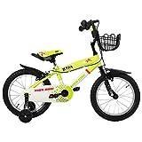 BTM 子ども用自転車 補助輪付き 軽量 16インチ 95%組立完了 1年安心保証 PL保険加入済み クリスマスプレゼント グリーン
