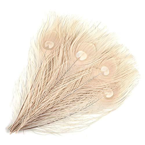 Mwoot 15 stücke Schöne Natürliche Pfauenfedern, Pfau Schwanzfedern Augen Federn Dekorationen für Handwerk Party 28-32 cm (Weiß)