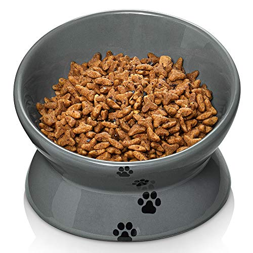 Y YHY Raised Cat Food Bowl, Ceramic Elevated Cat Bowl, Title Angle Protect Cat's Spine, Anti Vomiting Cat Dish, Backflow Prevention, Grey