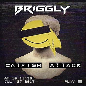 Catfish Attack