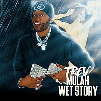 Wet Story