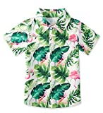 Tropical Shirts for Boys Palm Leaf Tropical Shirt Pink Flamingo Hawaiian Short Sleeve Button Down Shirts Size 3-4T for Sun Beach Party