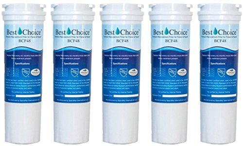 Best Choice Water Filter BCF48 Compatible With Fisher & Paykel 836848 Refrigerator Replacement Cartridge E402B, E442B, E522B, RF90A180DU, EFF-6017A (5-Pack)