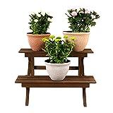 Worth Garden Ladder Plant Stand 2-Tier Wooden Planter Holder Flower Pot Display Shelf for Home Patio Lawn Garden Balcony - K323A00