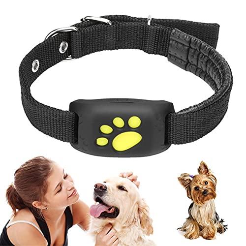 RYRA Traceur GPS pour animal domestique, collier intelligent pour chien et chat, résistant à l eau, fonction de rappel GPS, chargement USB, traceur GPS pour chiens et chats