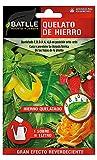 Abonos - Fertilizante Quelato de Hierro Sobre para 1L - Batlle