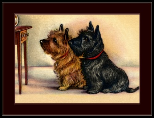 A SLICE IN TIME Cairn and Scottish Terrier Puppy Dog Puppies Dogs Vintage Art Poster Print. Measures 10 x 13 inches.