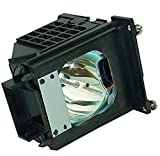 915P061010 915P061A10 Replacement DLP/LCD Projection TV Lamp