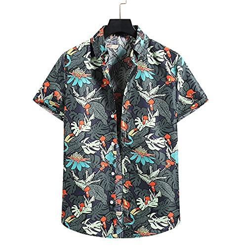 Shirt Hawaiana Hombre Manga Corta Verano Transpirable Moda Hombre Shirt Botones Básicos Tapeta Estampado Vintage Hombre Shirt Ocio Personalidad Cómoda Hombre Shirt Playa TD02 M