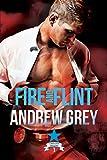 Fire and Flint (Carlisle Deputies Book 1)