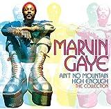 Ain't No Mountain High Enough: The Collection von Marvin Gaye