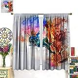 Petpany Hairu Warrior Zelda Game Age of Disaster Wear cortina de impresión tipo barra de 107 x 160 cm, hermosa decoración de habitación y configuración conveniente para comedor, dormitorio