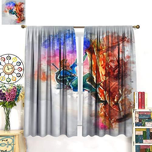 Petpany Hairu Warrior Zelda Game Age of Disaster Wear cortina de impresión tipo barra de 214 x 214 cm, para cocina y cocina, apto para dormitorio