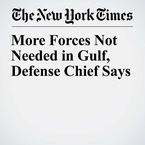 More Forces Not Needed in Gulf, Defense Chief Says copertina