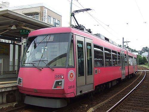 Tokyu Series 300 (305F Cherry rot) (Model Train)