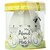 Kate Aspen'About to Hatch' Kitchen Egg Timer in Showcase Gift Box, Yellow (18010WT)