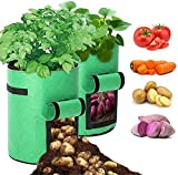 10 galones jardín flor vegetal bolsas de cultivo de patata cultivan bolsas plantando bolsas de tela Potes transpirable no tejido bolso de tomate con colgajo Velcro Window Handles 2 Pack bolsa de culti