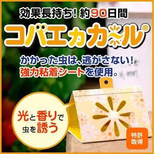コバエカカール(4個入)